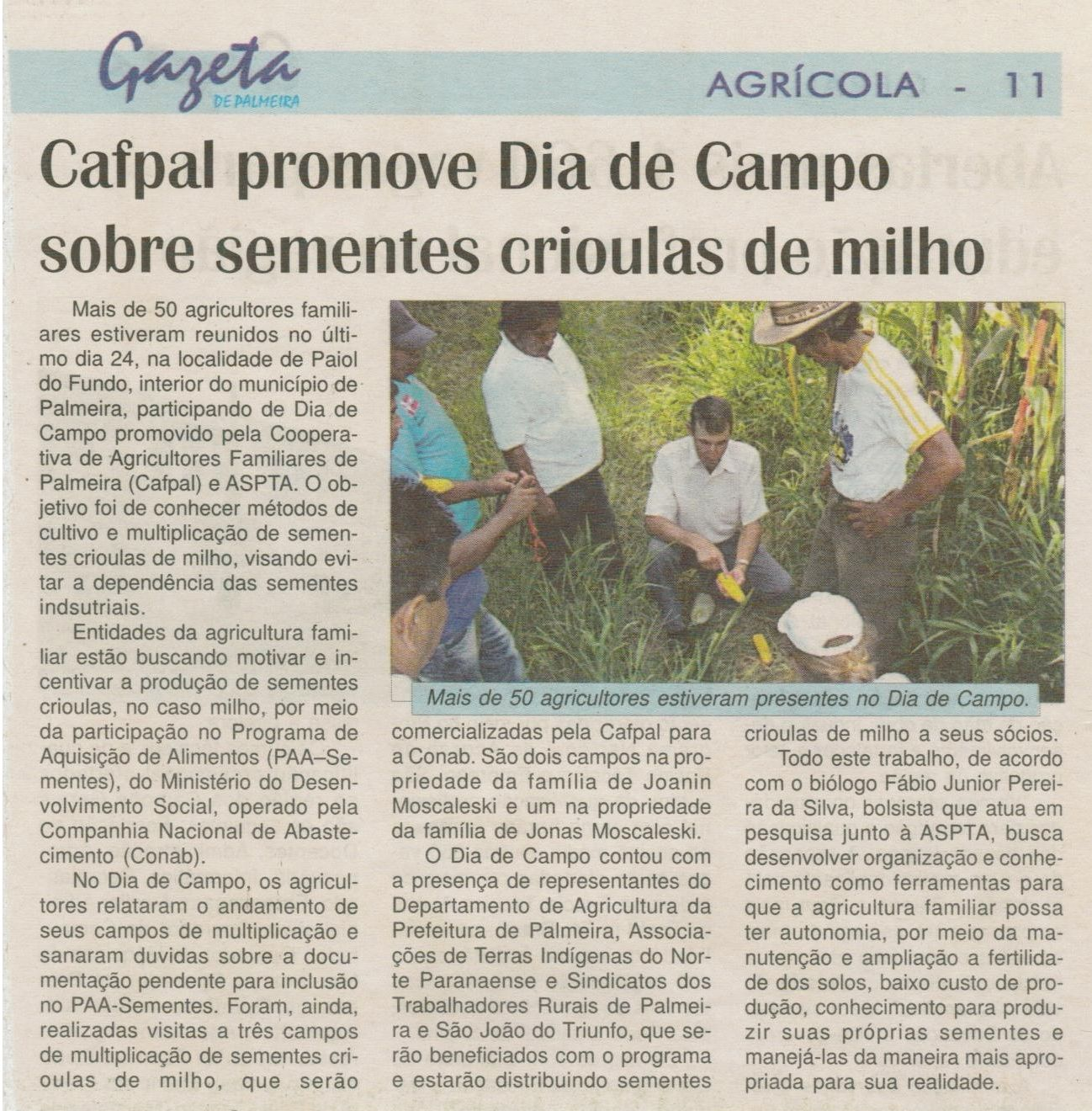 gazeta de palemira jan2012