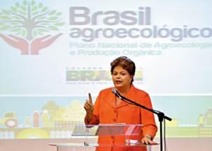 Dilma durante lançamento do plano de agroecologia, em Brasília