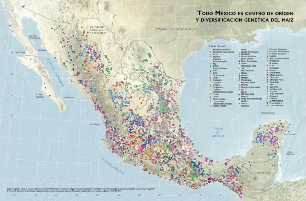 todo o mexico e centro de origem do milho