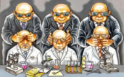 Estudo aponta conflitos de interesse em pesquisas sobre cultivos OGM
