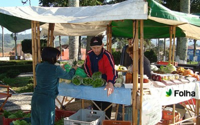 Família de Palmeira produz alimentos agroecológicos há mais de 20 anos