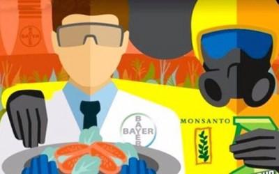 Os alimentos do mundo têm dono, na GloboNews