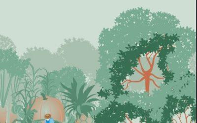 Livro: A Política Nacional de Agroecologia e Produção Orgânica no Brasil
