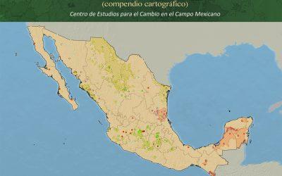 30 anos de transgênicos no México