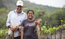 Da família agricultora para a familia da cidade: Cooperativa de Acaiaca distribui alimentos saudáveis em tempos de pandemia