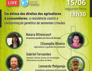 Contaminação de sementes crioulas e impactos para agricultores e consumidores é tema de debate online