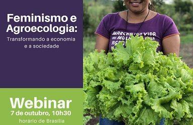 Webinar dia 7 de outubro de 2020 'Feminismo e Agroecologia'