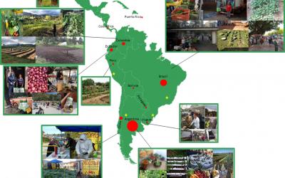 Respostas da agricultura familiar e do movimento agroecológico à COVID-19