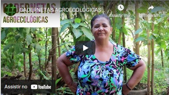 Cadernetas Agroecológicas – Feminismo na prática