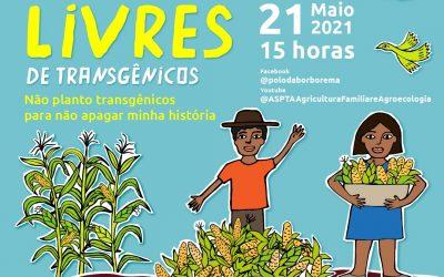 LIVE Comunidades livres de transgênicos