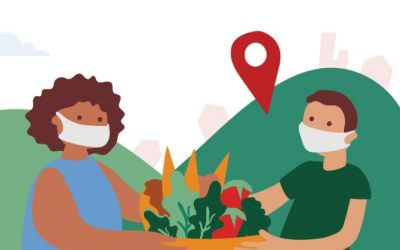 Mapeamento de experiências em comida de verdade destaca aprendizados essenciais sobre o abastecimento alimentar no Brasil