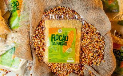 Semente crioula gera comida de verdade: experiências de beneficiamento do milho livre de transgênicos e agrotóxicos no Nordeste